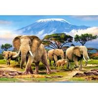 Пазл «Слоны» (C-103188)