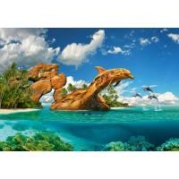 Пазл «Дельфиний рай» (C-103508)