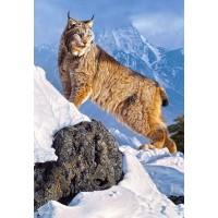 Пазл «Рысь в горах» (C-103560)