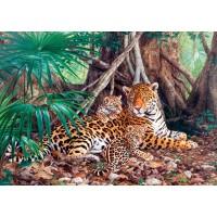 Пазл «Ягуары в джунглях» (C-300280)