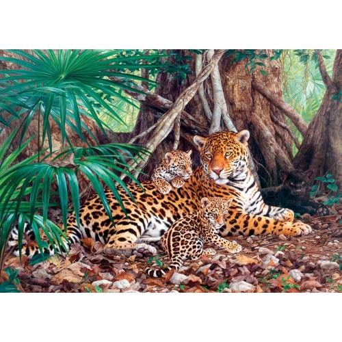 Пазл «Ягуары в джунглях» (C-300280) Большие
