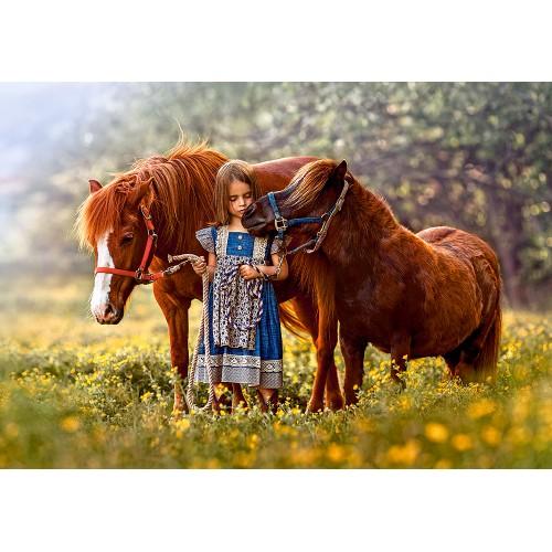 Пазл «Лошади» (B-52509)