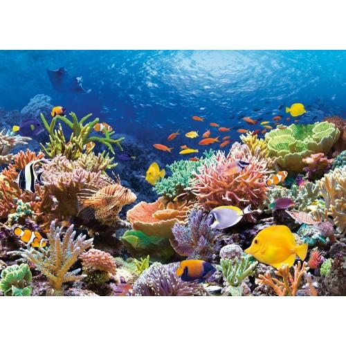 Пазл «Коралловый риф» (C-101511) 1000 элементов