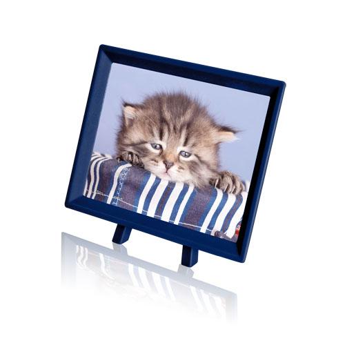 Пазл «Грустный котенок» (P1070)